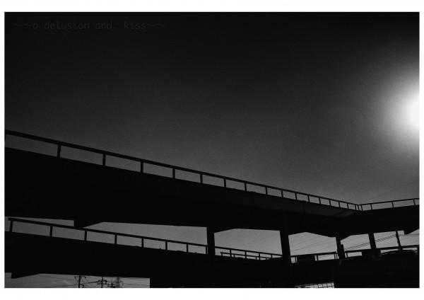 LEICA M Monochrom, Summilux 35mm f1.4 ASPH.