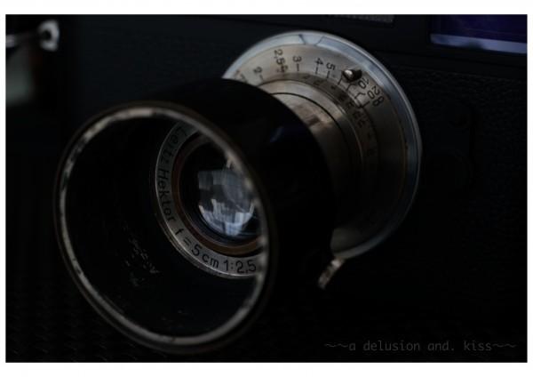 SONY α7R, Carl Zeiss Makro-Planar 60mm f2.8 C