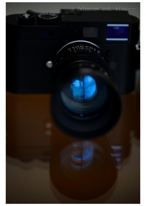 Nikon D4,  Carl Zeiss Makro Planar T* 2/100 ZF.2