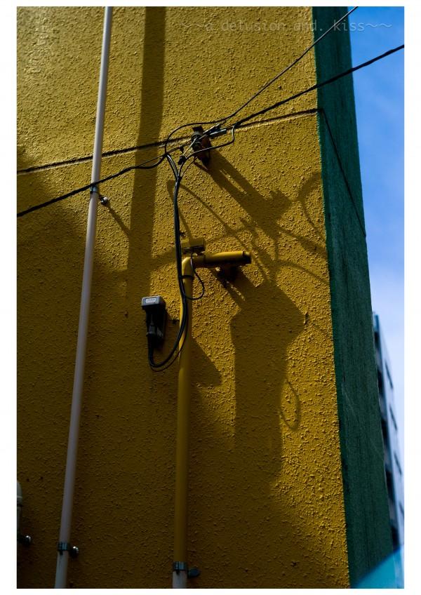Leica M9, Summitar 5cm f2