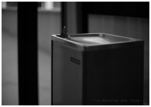 Leica M Monochrom, NOKTON 50mm f1.1 ZM